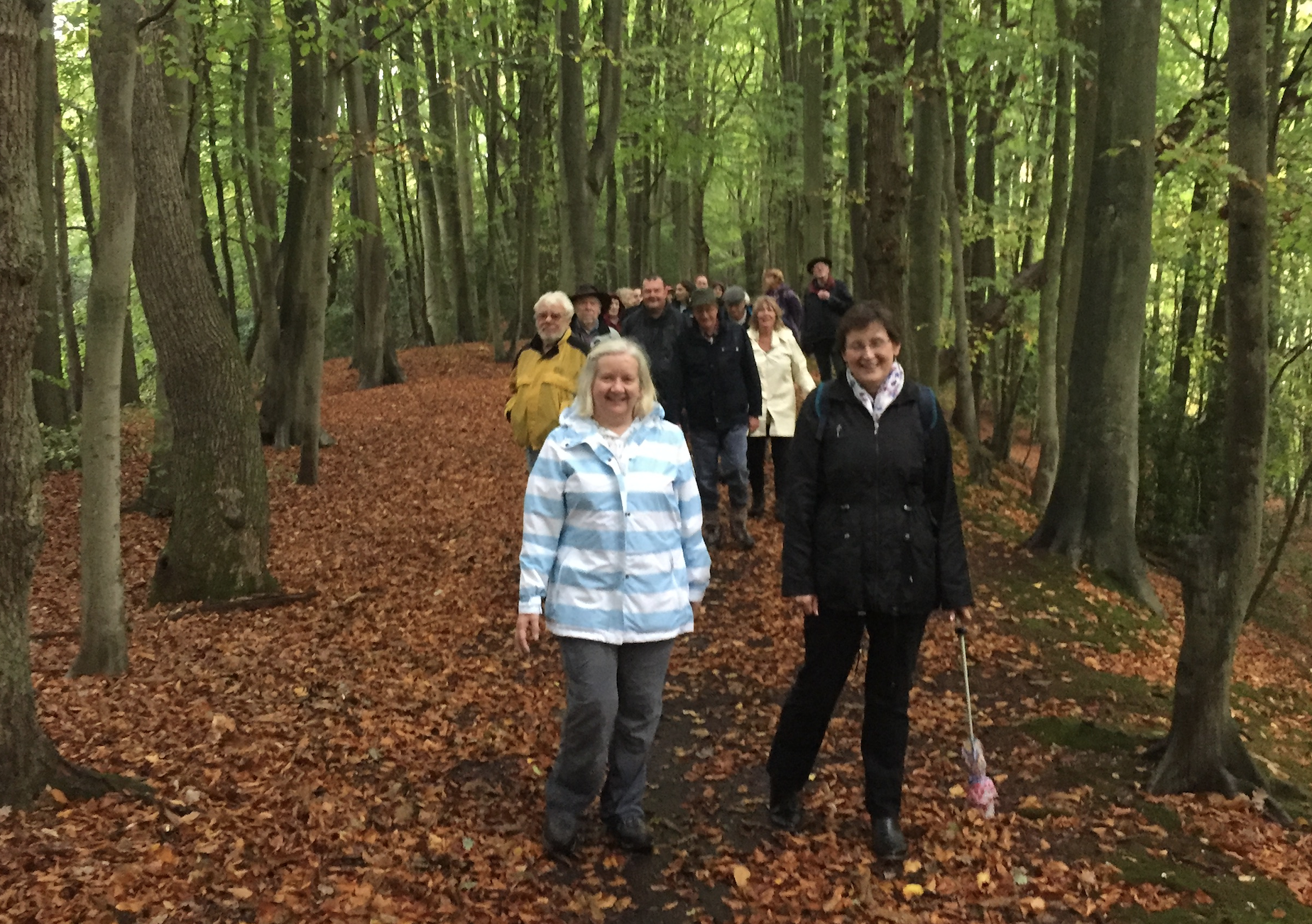 Surrey Heath Walking for Health scheme members on a walk - November 2017