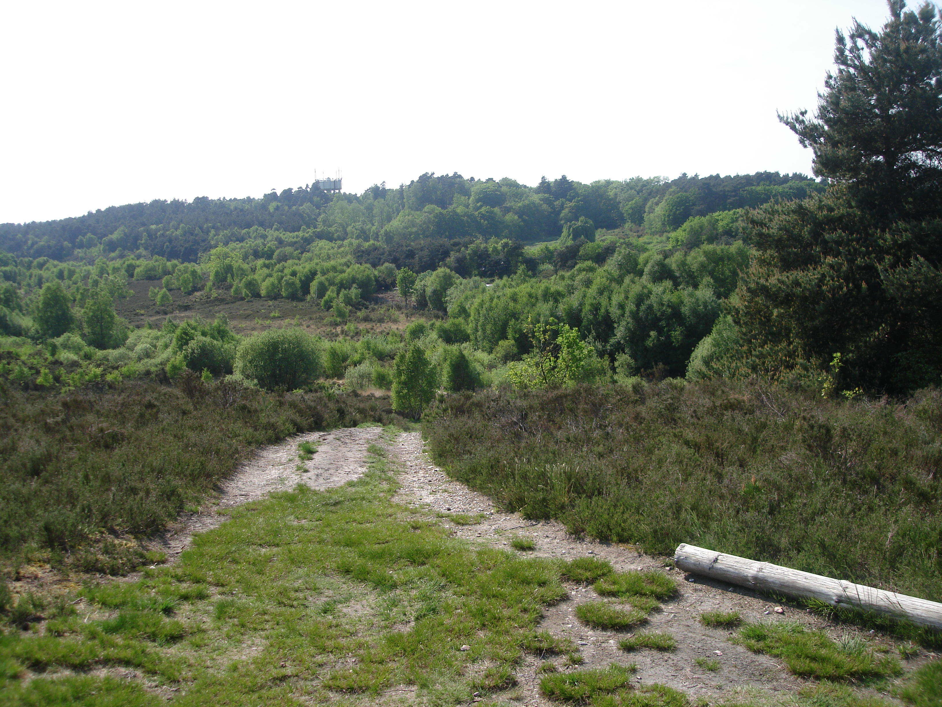 Lightwater Country Park 2017