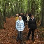 Surrey Heath Walking for Health scheme members on a walk – November 2017
